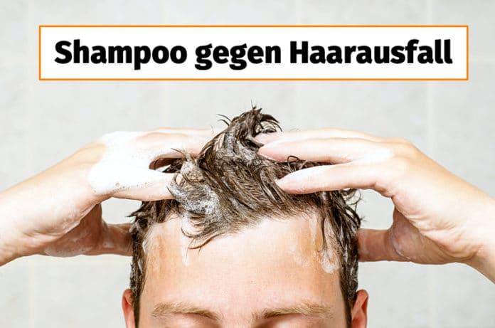 Shampoo gegen Haarausfall im Check